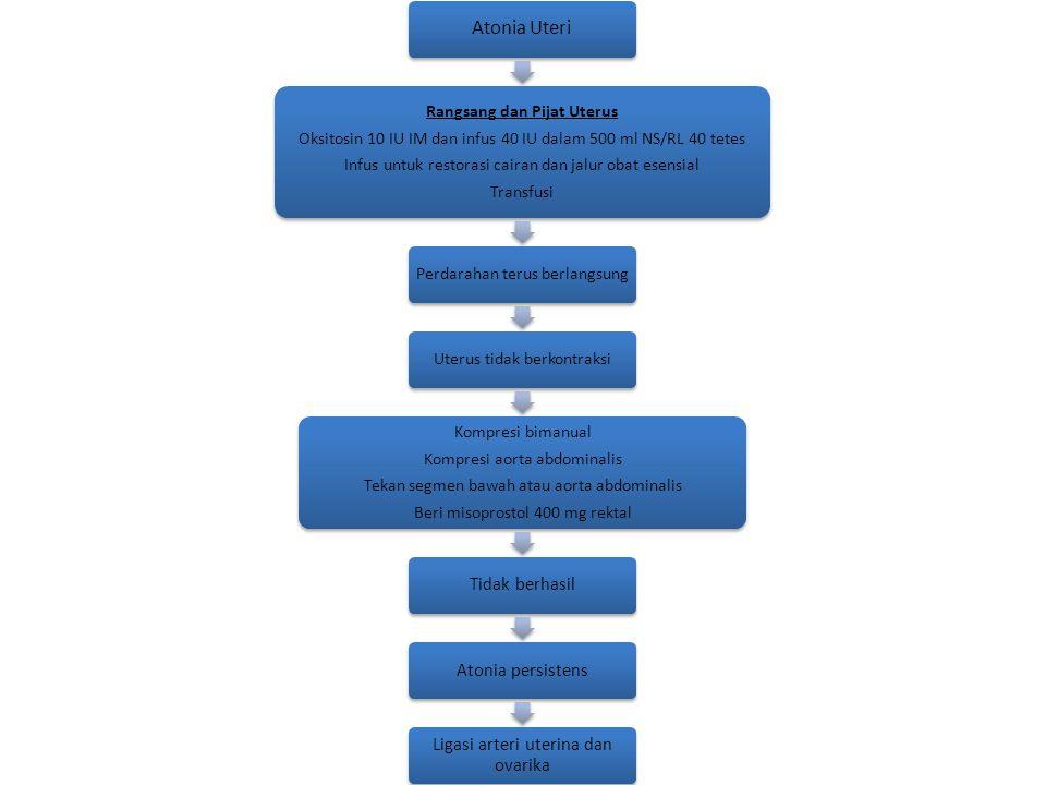 Atonia Uteri Rangsang dan Pijat Uterus Oksitosin 10 IU IM dan infus 40 IU dalam 500 ml NS/RL 40 tetes Infus untuk restorasi cairan dan jalur obat esen