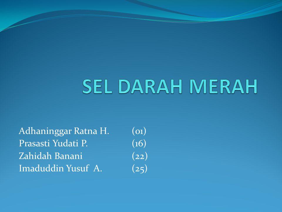 Adhaninggar Ratna H.(01) Prasasti Yudati P.(16) Zahidah Banani(22) Imaduddin Yusuf A.(25)