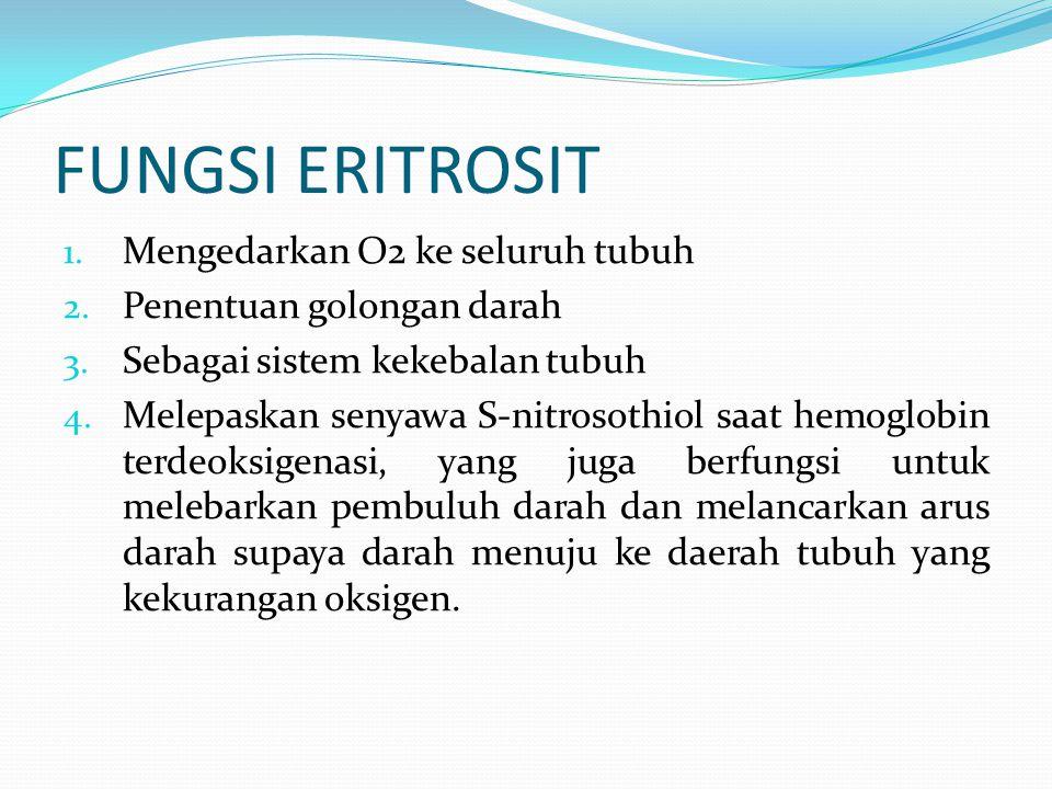 FUNGSI ERITROSIT 1. Mengedarkan O2 ke seluruh tubuh 2. Penentuan golongan darah 3. Sebagai sistem kekebalan tubuh 4. Melepaskan senyawa S-nitrosothiol