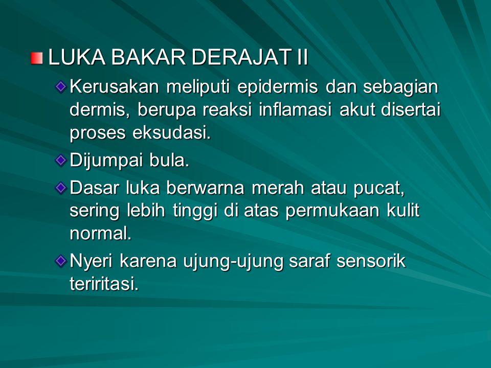 LUKA BAKAR DERAJAT II Kerusakan meliputi epidermis dan sebagian dermis, berupa reaksi inflamasi akut disertai proses eksudasi. Dijumpai bula. Dasar lu