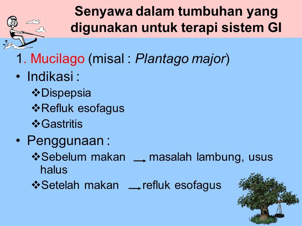 Senyawa dalam tumbuhan yang digunakan untuk terapi sistem GI 1. Mucilago (misal : Plantago major) Indikasi :  Dispepsia  Refluk esofagus  Gastritis