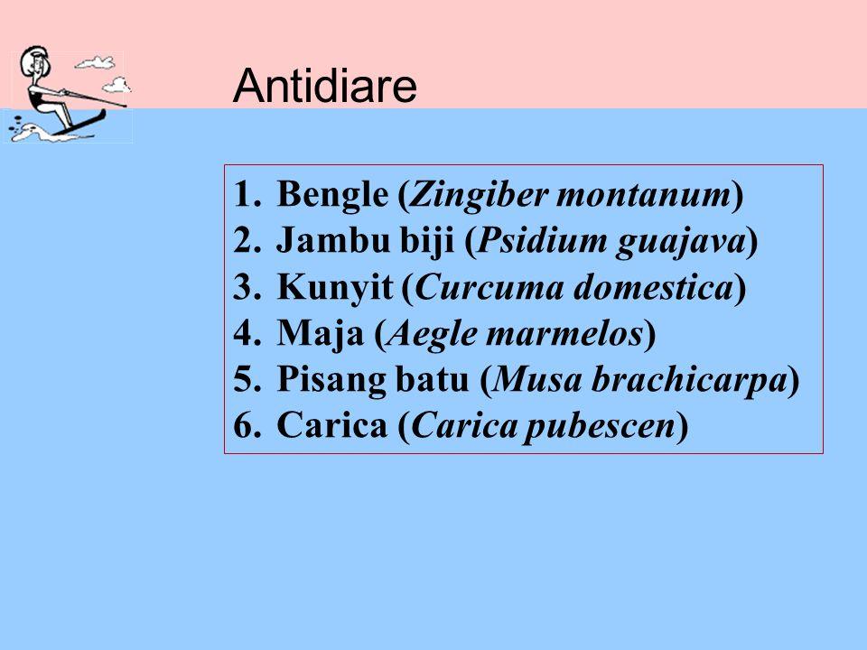 1.Bengle (Zingiber montanum) 2.Jambu biji (Psidium guajava) 3.Kunyit (Curcuma domestica) 4.Maja (Aegle marmelos) 5.Pisang batu (Musa brachicarpa) 6.Ca