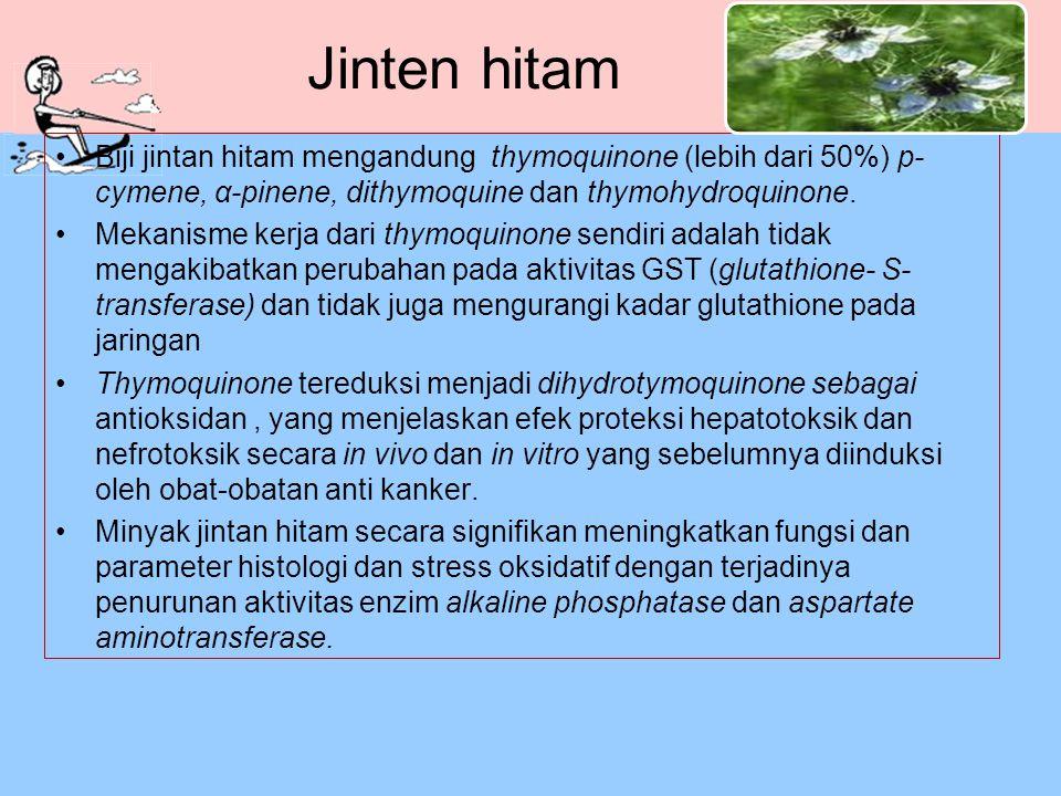 Jinten hitam Biji jintan hitam mengandung thymoquinone (lebih dari 50%) p- cymene, α-pinene, dithymoquine dan thymohydroquinone. Mekanisme kerja dari