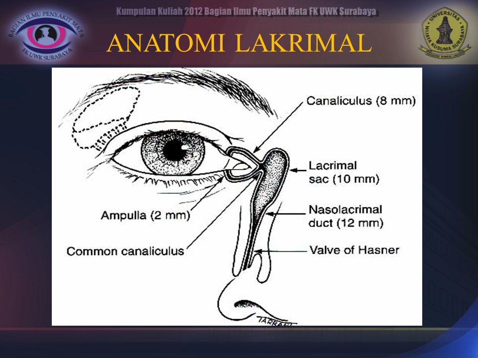 TRACHOMA Hampir semua penyakit mata di indonesia oleh orang awam disebut trachoma,  kelainan refraksi.