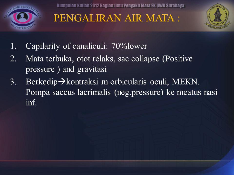 B.PTERYGIUM Seperti sayap pada conjunctiva yang seringkali menutupi cornea.