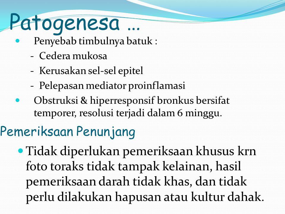 Patogenesa … Penyebab timbulnya batuk : - Cedera mukosa - Kerusakan sel-sel epitel - Pelepasan mediator proinflamasi Obstruksi & hiperresponsif bronku