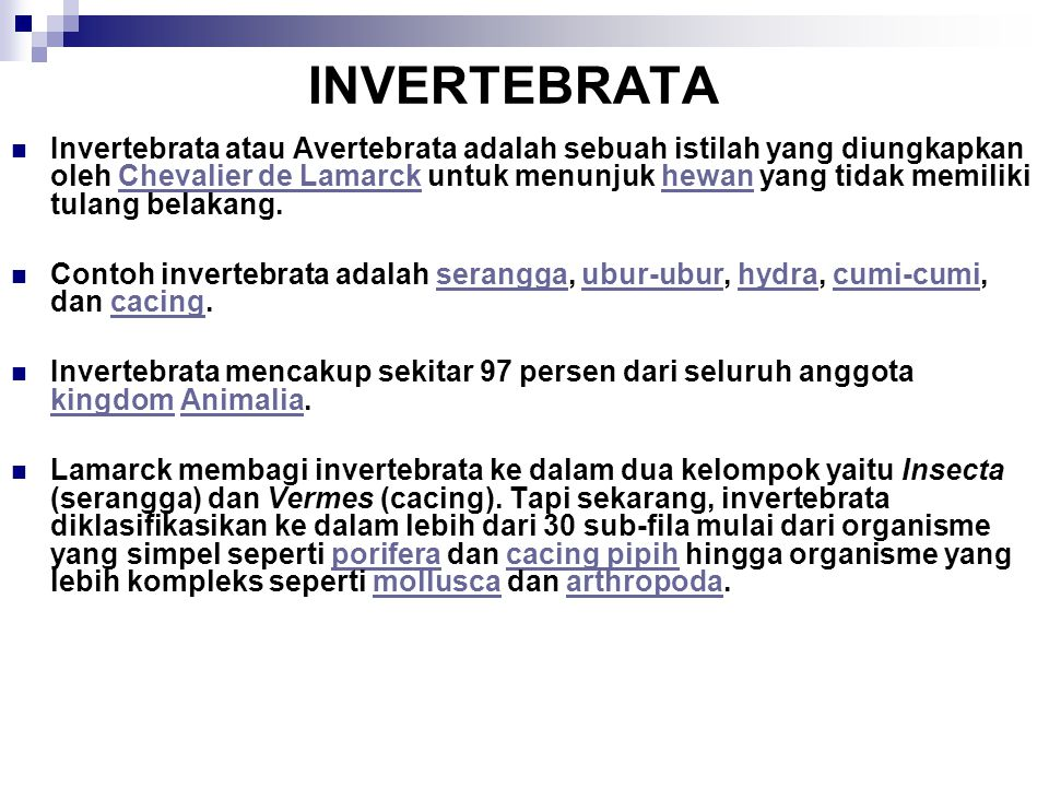 INVERTEBRATA Invertebrata atau Avertebrata adalah sebuah istilah yang diungkapkan oleh Chevalier de Lamarck untuk menunjuk hewan yang tidak memiliki t
