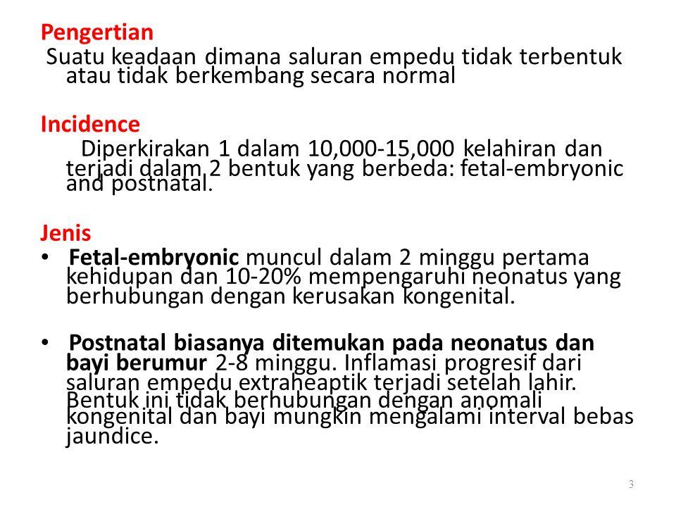 and postnatal. Pengertian Suatu keadaan dimana saluran empedu tidak terbentuk atau tidak berkembang secara normal Incidence Diperkirakan 1 dalam 10,00