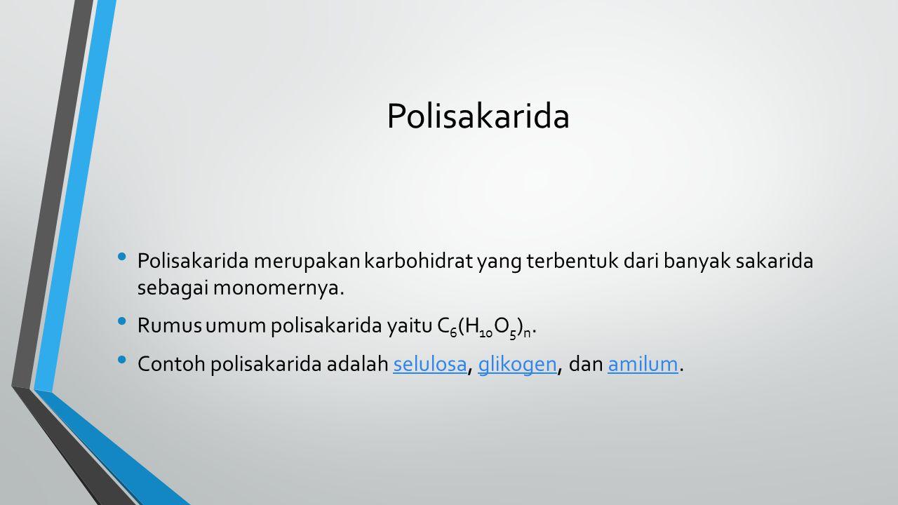 Polisakarida Polisakarida merupakan karbohidrat yang terbentuk dari banyak sakarida sebagai monomernya. Rumus umum polisakarida yaitu C 6 (H 10 O 5 )