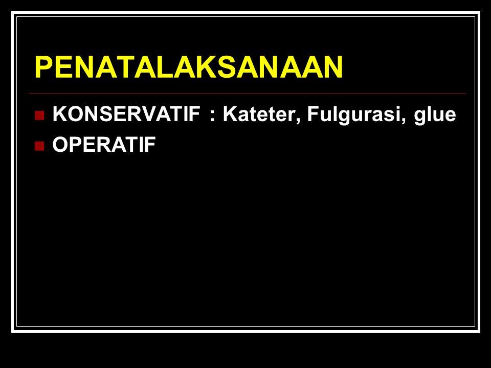 PENATALAKSANAAN KONSERVATIF : Kateter, Fulgurasi, glue OPERATIF