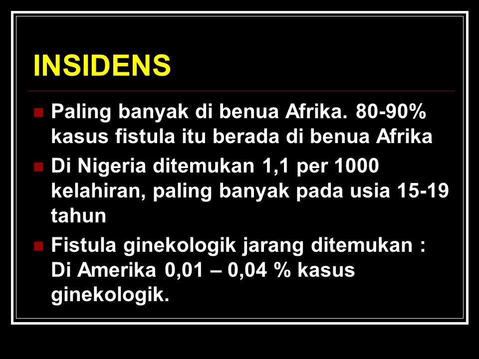 INSIDENS Paling banyak di benua Afrika.