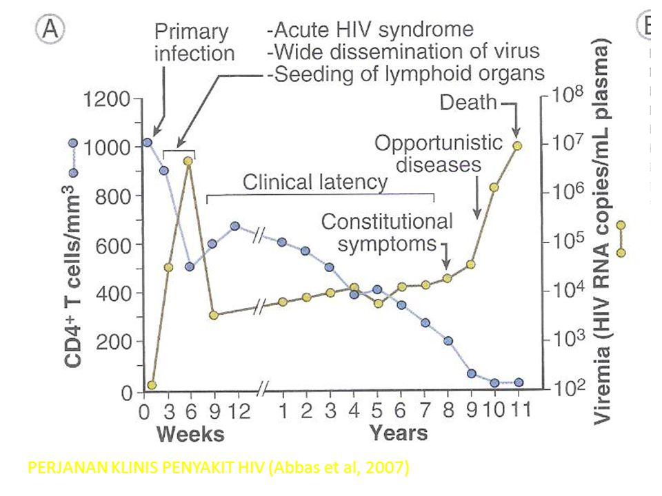 PERJANAN KLINIS PENYAKIT HIV (Abbas et al, 2007)