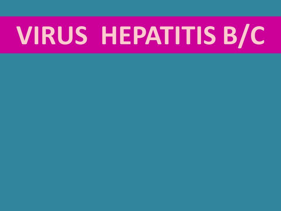 VIRUS HEPATITIS B/C