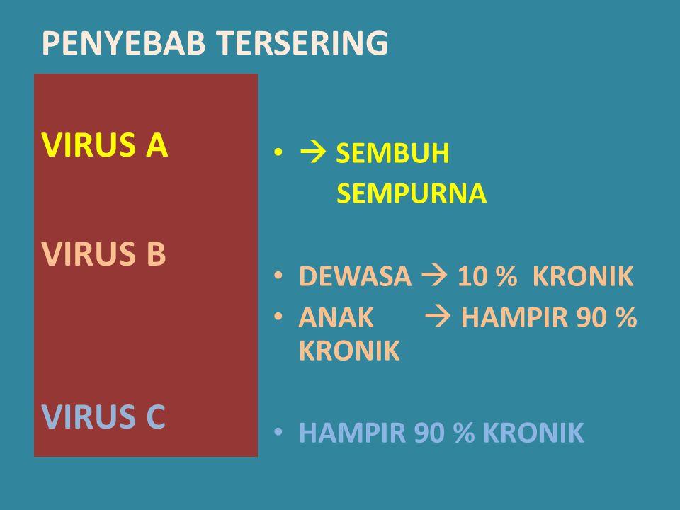PENYEBAB TERSERING VIRUS A VIRUS B VIRUS C  SEMBUH SEMPURNA DEWASA  10 % KRONIK ANAK  HAMPIR 90 % KRONIK HAMPIR 90 % KRONIK
