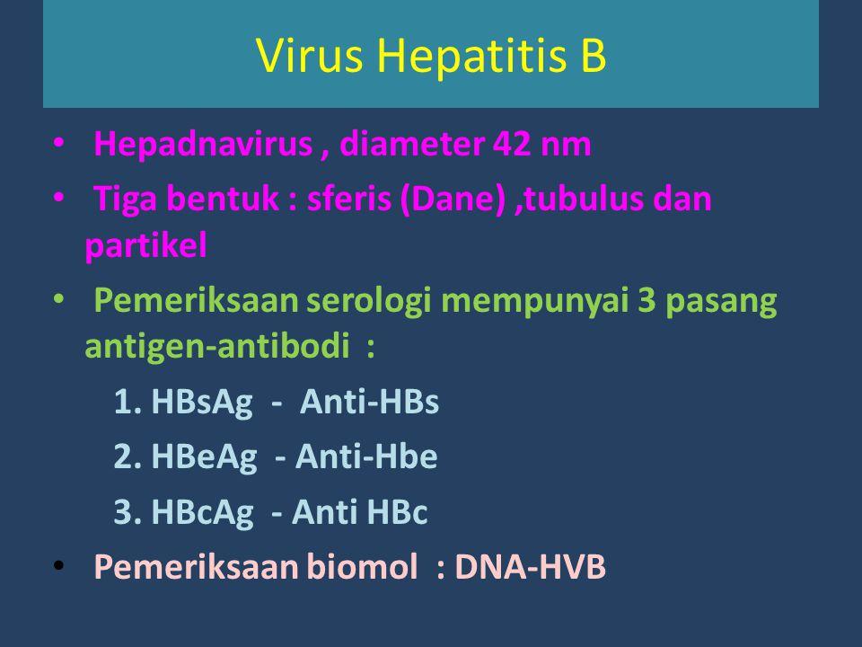 Virus Hepatitis B Hepadnavirus, diameter 42 nm Tiga bentuk : sferis (Dane),tubulus dan partikel Pemeriksaan serologi mempunyai 3 pasang antigen-antibo