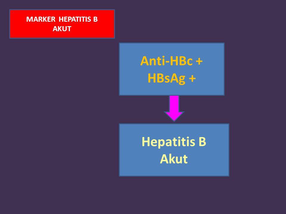 MARKER HEPATITIS B AKUT Anti-HBc + HBsAg + Hepatitis B Akut