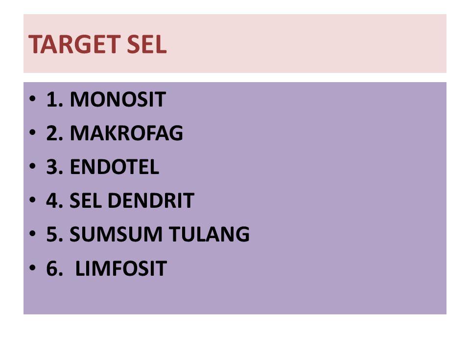 TARGET SEL 1. MONOSIT 2. MAKROFAG 3. ENDOTEL 4. SEL DENDRIT 5. SUMSUM TULANG 6. LIMFOSIT