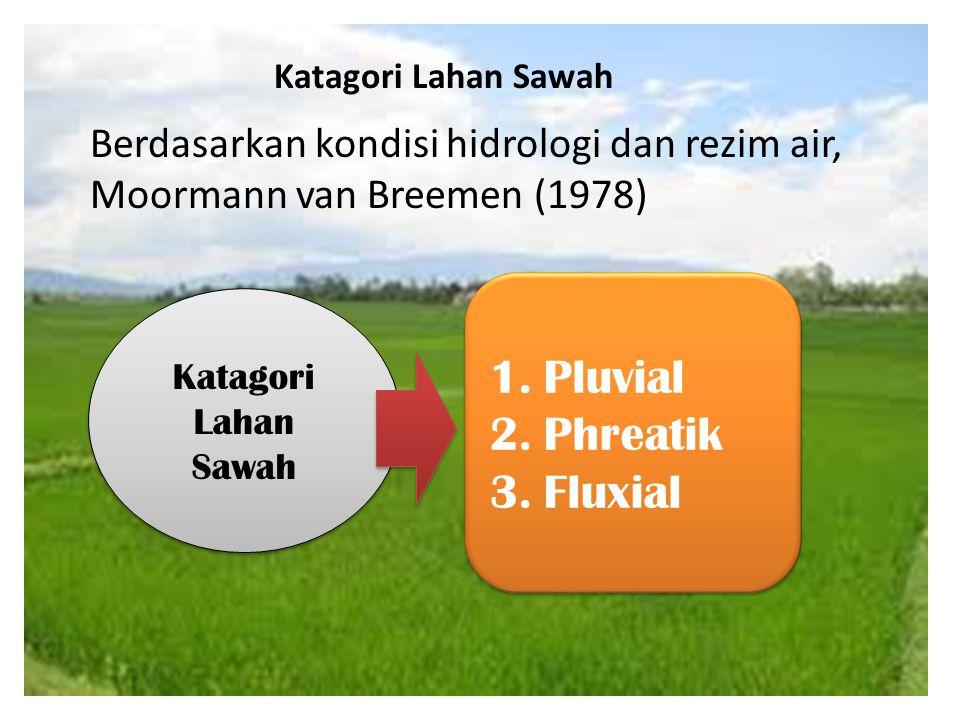 Katagori Lahan Sawah 1.Pluvial 2.Phreatik 3.Fluxial 1.Pluvial 2.Phreatik 3.Fluxial Katagori Lahan Sawah Berdasarkan kondisi hidrologi dan rezim air, M