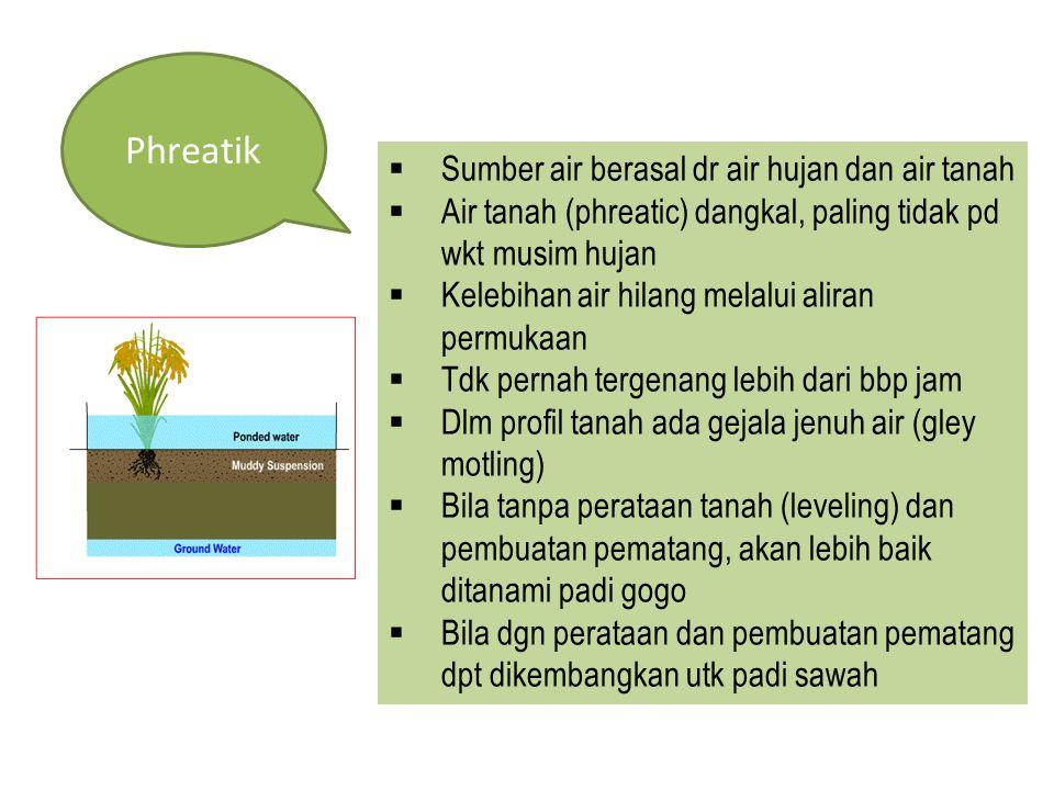 Phreatik  Sumber air berasal dr air hujan dan air tanah  Air tanah (phreatic) dangkal, paling tidak pd wkt musim hujan  Kelebihan air hilang melalu