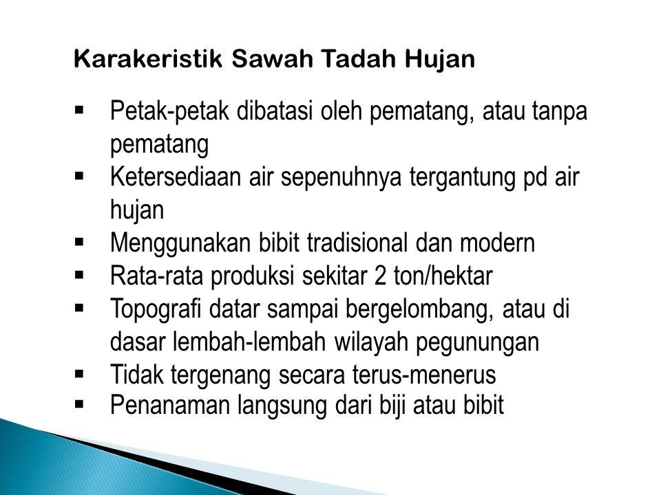 Karakeristik Sawah Tadah Hujan  Petak-petak dibatasi oleh pematang, atau tanpa pematang  Ketersediaan air sepenuhnya tergantung pd air hujan  Mengg