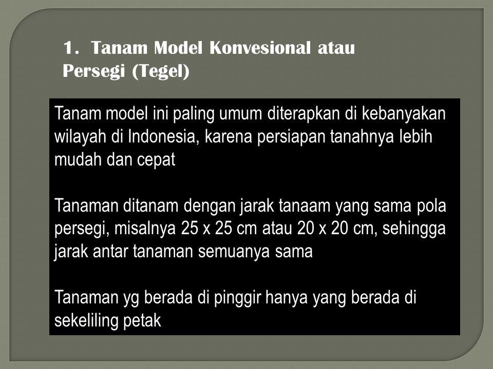 1. Tanam Model Konvesional atau Persegi (Tegel) Tanam model ini paling umum diterapkan di kebanyakan wilayah di Indonesia, karena persiapan tanahnya l
