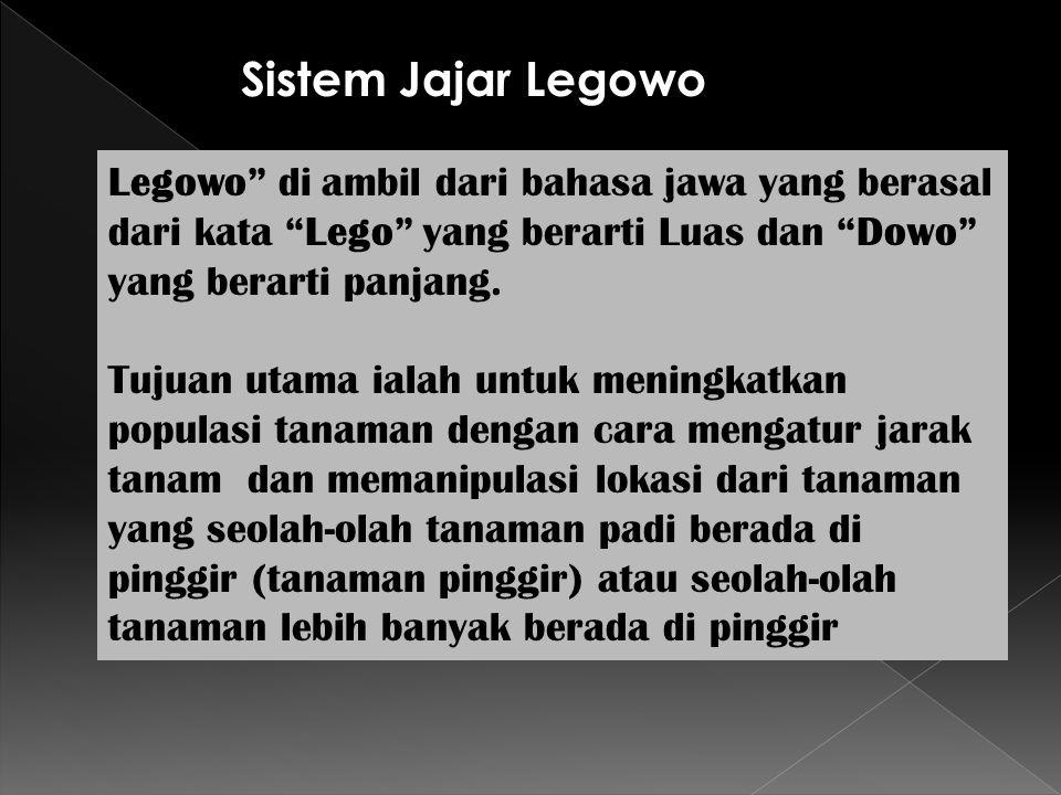 """Legowo"""" di ambil dari bahasa jawa yang berasal dari kata """"Lego"""" yang berarti Luas dan """"Dowo"""" yang berarti panjang. Tujuan utama ialah untuk meningkatk"""