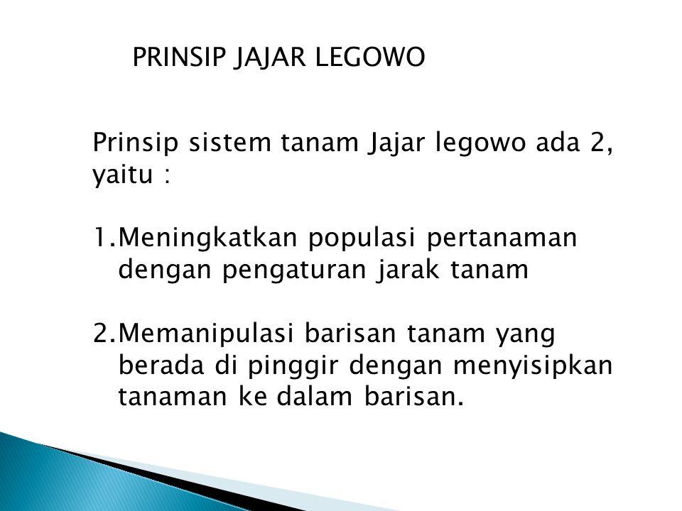 Prinsip sistem tanam Jajar legowo ada 2, yaitu : 1.Meningkatkan populasi pertanaman dengan pengaturan jarak tanam 2.Memanipulasi barisan tanam yang be