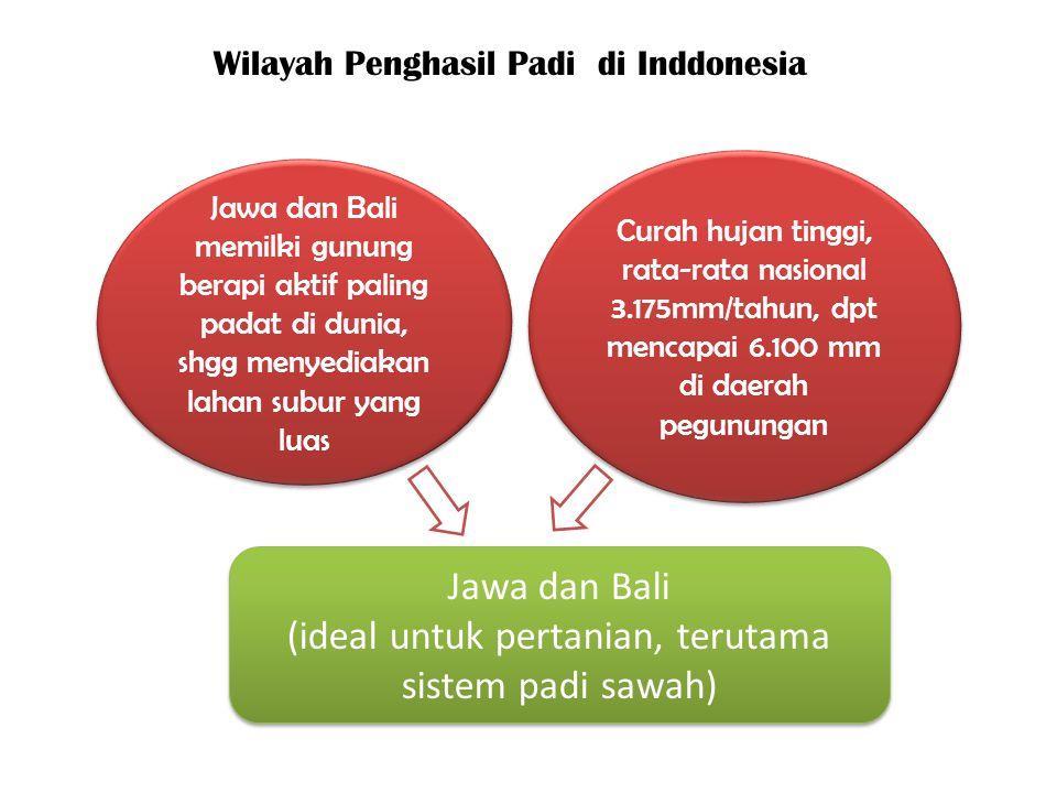 Jawa dan Bali memilki gunung berapi aktif paling padat di dunia, shgg menyediakan lahan subur yang luas Curah hujan tinggi, rata-rata nasional 3.175mm