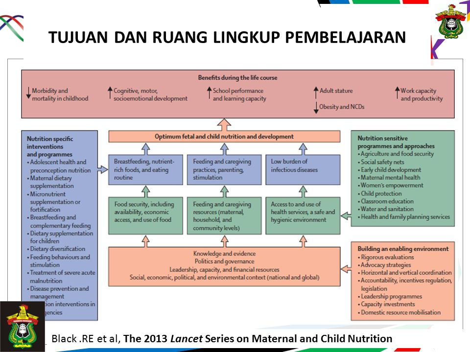 Prodi Gizi FKM UH TUJUAN DAN RUANG LINGKUP PEMBELAJARAN Black.RE et al, The 2013 Lancet Series on Maternal and Child Nutrition
