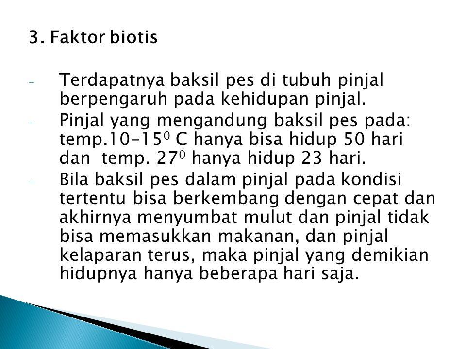 3.Faktor biotis - Terdapatnya baksil pes di tubuh pinjal berpengaruh pada kehidupan pinjal.