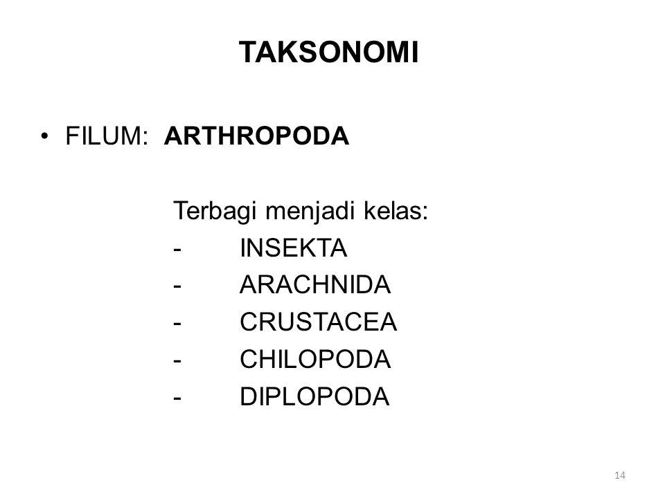 TAKSONOMI FILUM: ARTHROPODA Terbagi menjadi kelas: -INSEKTA -ARACHNIDA -CRUSTACEA -CHILOPODA -DIPLOPODA 14