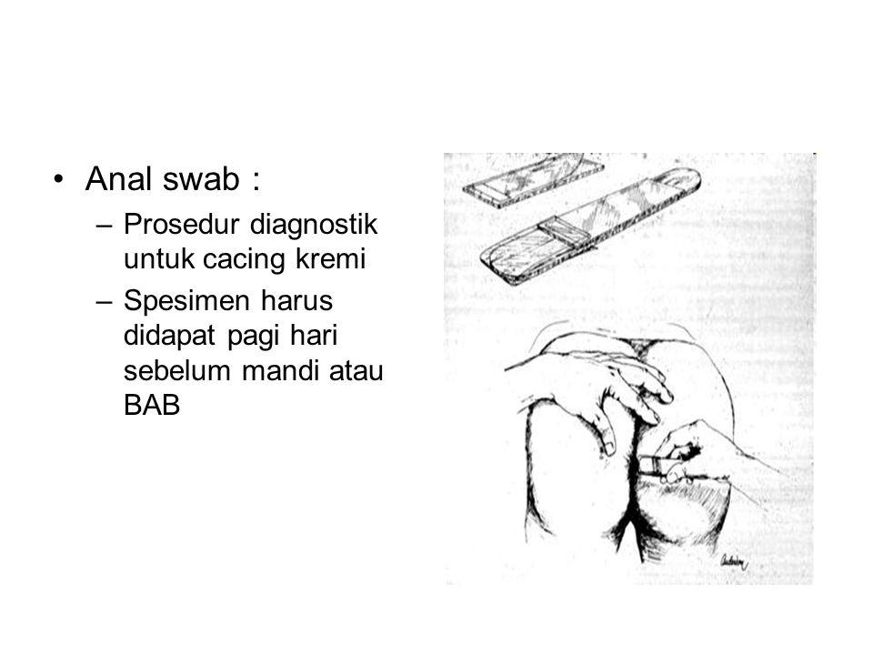 Anal swab : –Prosedur diagnostik untuk cacing kremi –Spesimen harus didapat pagi hari sebelum mandi atau BAB