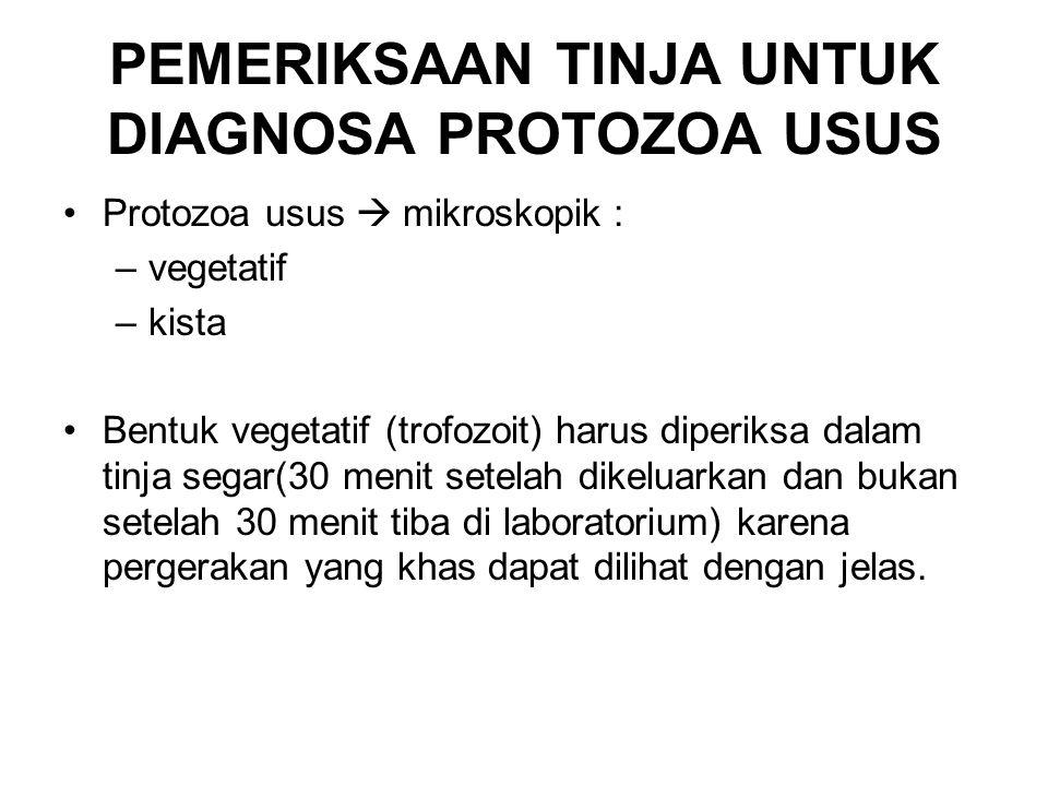 PEMERIKSAAN TINJA UNTUK DIAGNOSA PROTOZOA USUS Protozoa usus  mikroskopik : –vegetatif –kista Bentuk vegetatif (trofozoit) harus diperiksa dalam tinj