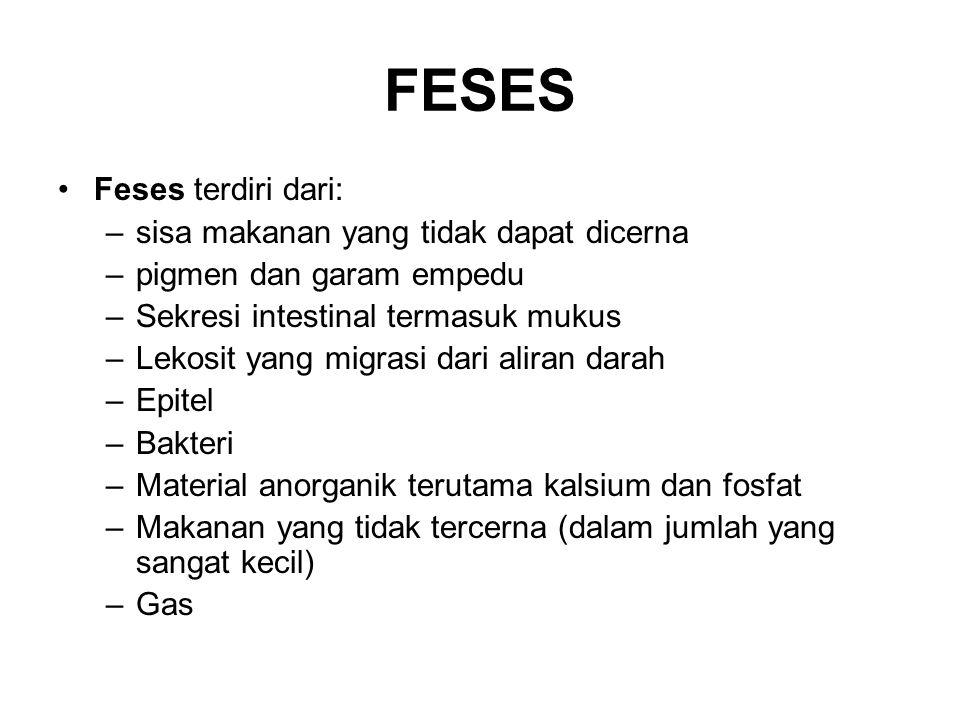 FESES Feses terdiri dari: –sisa makanan yang tidak dapat dicerna –pigmen dan garam empedu –Sekresi intestinal termasuk mukus –Lekosit yang migrasi dar
