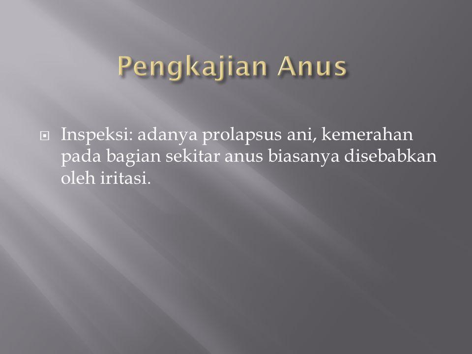  Inspeksi: adanya prolapsus ani, kemerahan pada bagian sekitar anus biasanya disebabkan oleh iritasi.
