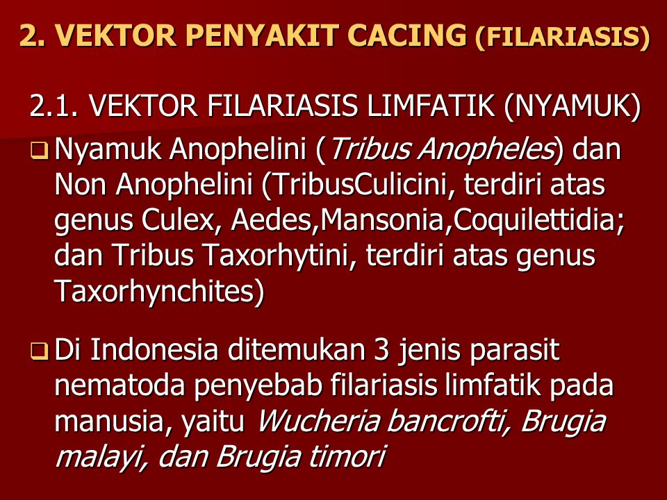 2. VEKTOR PENYAKIT CACING (FILARIASIS) 2.1. VEKTOR FILARIASIS LIMFATIK (NYAMUK)  Nyamuk Anophelini (Tribus Anopheles) dan Non Anophelini (TribusCulic
