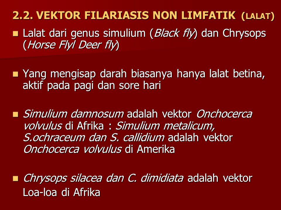 2.2. VEKTOR FILARIASIS NON LIMFATIK ( LALAT ) Lalat dari genus simulium (Black fly) dan Chrysops (Horse Flyl Deer fly) Lalat dari genus simulium (Blac