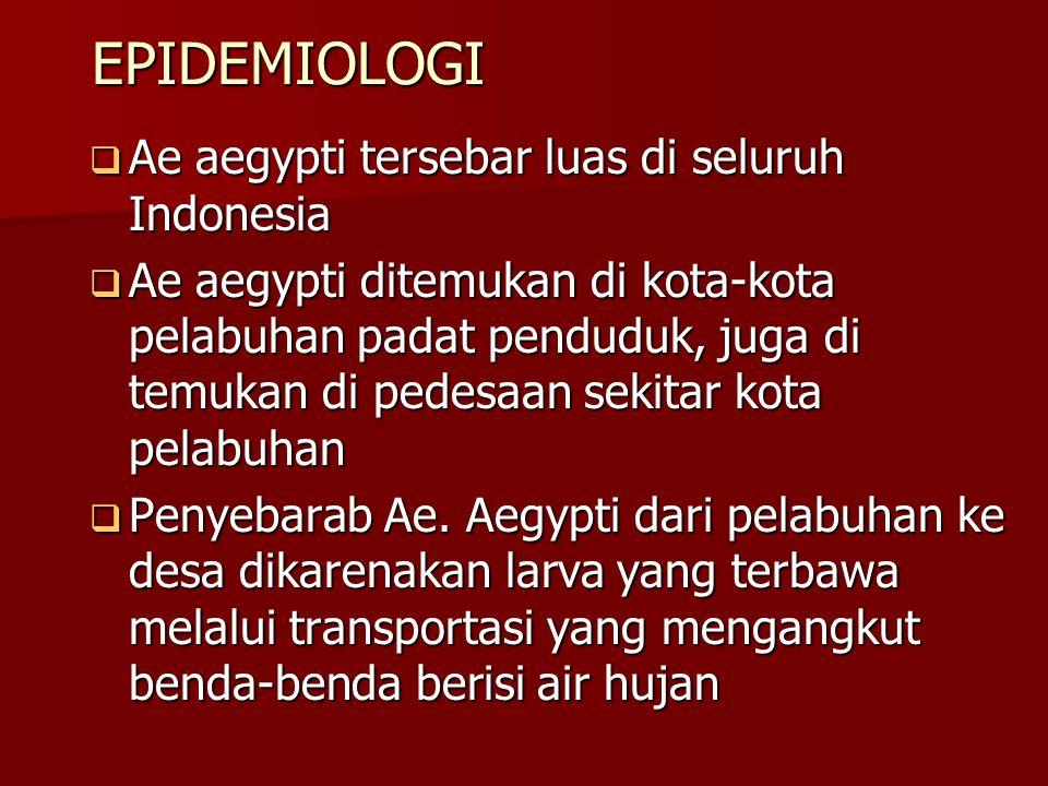 EPIDEMIOLOGI EPIDEMIOLOGI  Ae aegypti tersebar luas di seluruh Indonesia  Ae aegypti ditemukan di kota-kota pelabuhan padat penduduk, juga di temuka