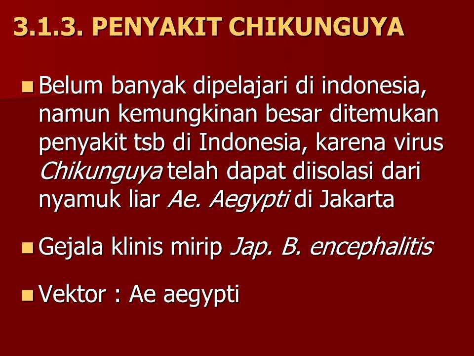 3.1.3. PENYAKIT CHIKUNGUYA Belum banyak dipelajari di indonesia, namun kemungkinan besar ditemukan penyakit tsb di Indonesia, karena virus Chikunguya