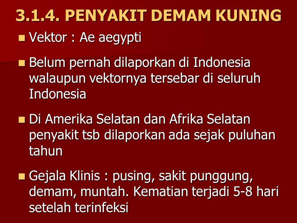 3.1.4. PENYAKIT DEMAM KUNING Vektor : Ae aegypti Vektor : Ae aegypti Belum pernah dilaporkan di Indonesia walaupun vektornya tersebar di seluruh Indon