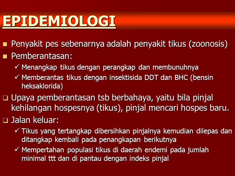 EPIDEMIOLOGI Penyakit pes sebenarnya adalah penyakit tikus (zoonosis) Penyakit pes sebenarnya adalah penyakit tikus (zoonosis) Pemberantasan: Pemberan