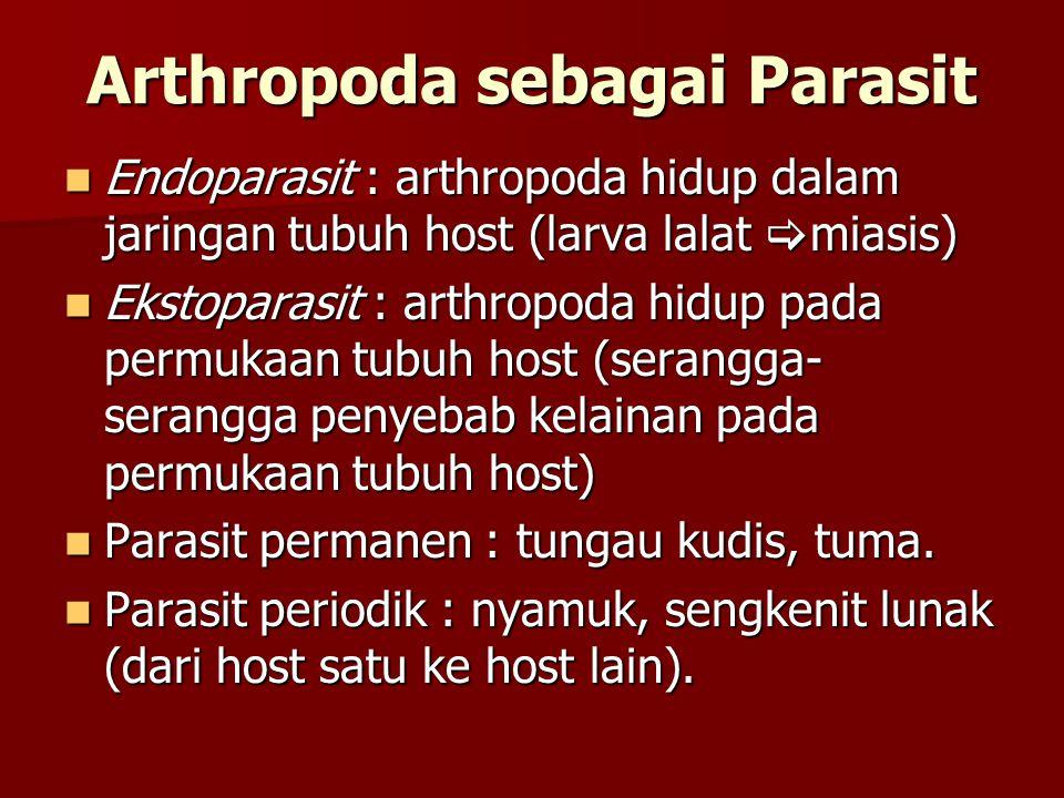 Arthropoda sebagai Parasit Endoparasit : arthropoda hidup dalam jaringan tubuh host (larva lalat  miasis) Endoparasit : arthropoda hidup dalam jaring