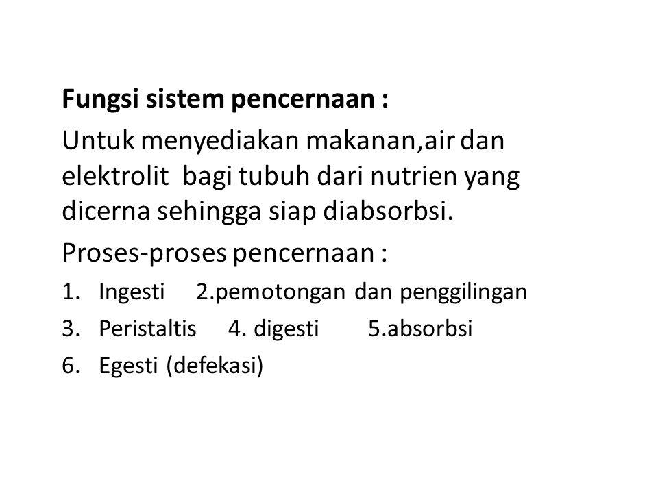 Fungsi sistem pencernaan : Untuk menyediakan makanan,air dan elektrolit bagi tubuh dari nutrien yang dicerna sehingga siap diabsorbsi. Proses-proses p