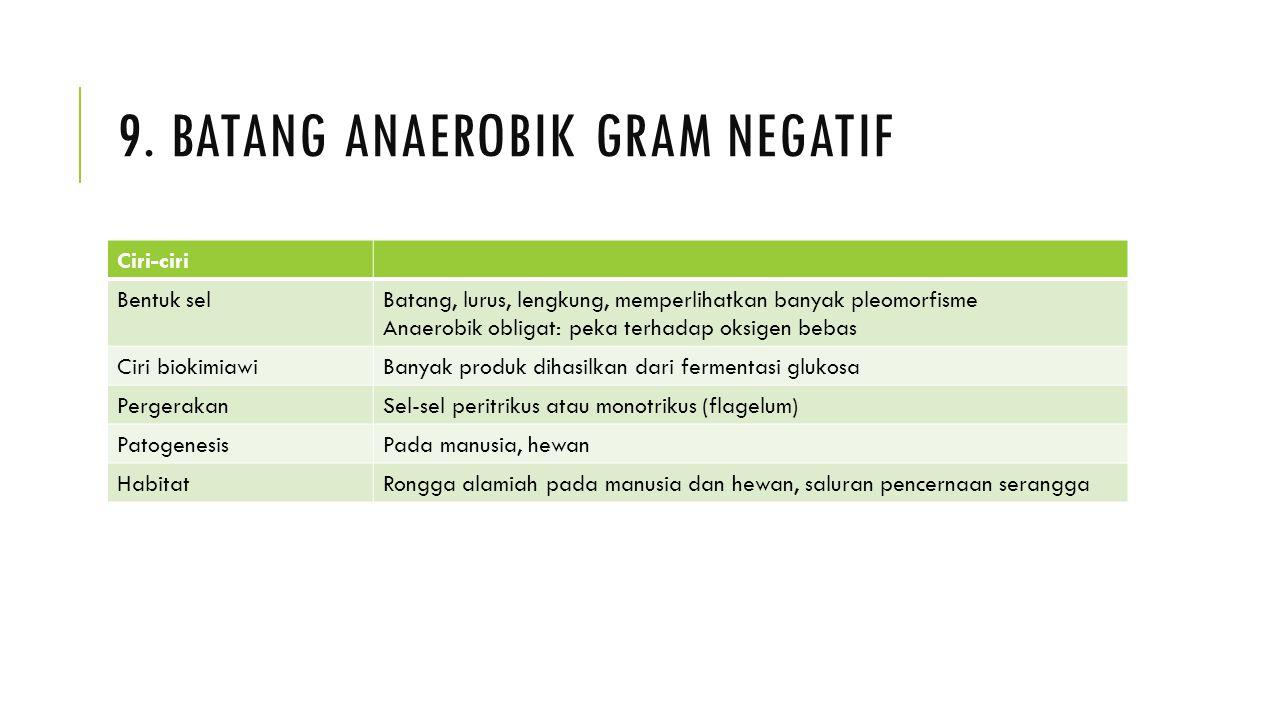 9. BATANG ANAEROBIK GRAM NEGATIF Ciri-ciri Bentuk selBatang, lurus, lengkung, memperlihatkan banyak pleomorfisme Anaerobik obligat: peka terhadap oksi