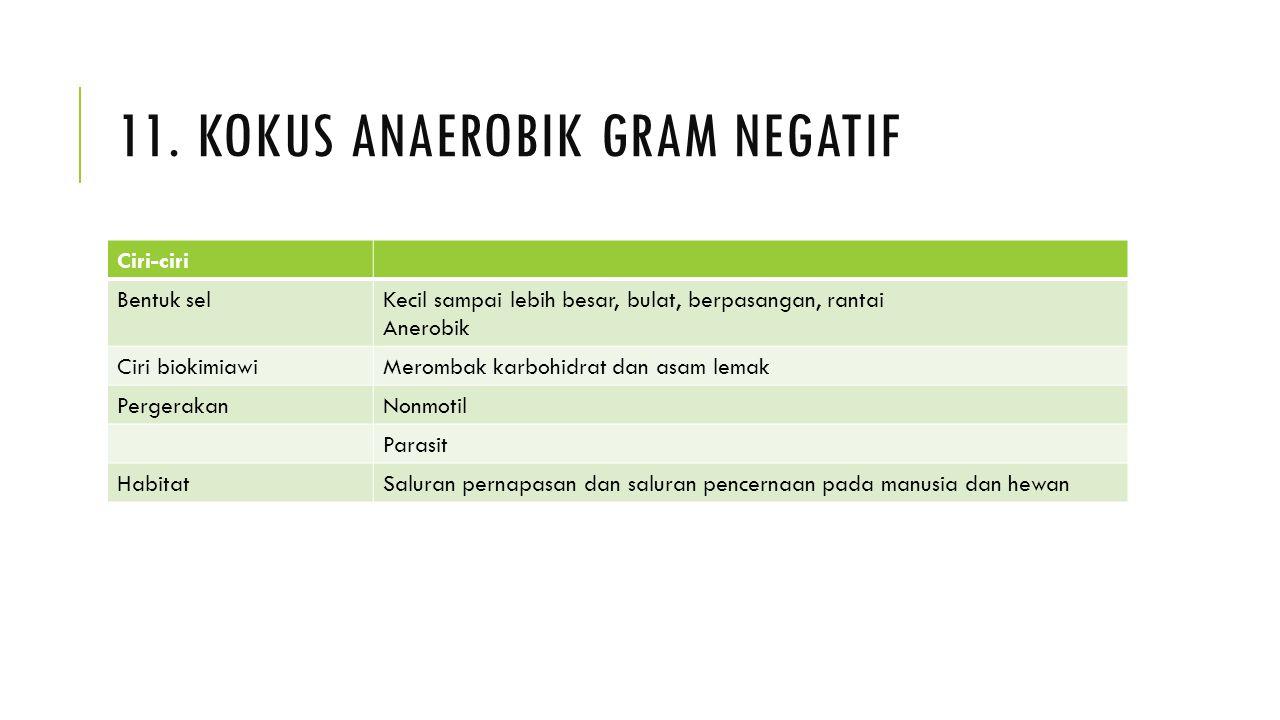 11. KOKUS ANAEROBIK GRAM NEGATIF Ciri-ciri Bentuk selKecil sampai lebih besar, bulat, berpasangan, rantai Anerobik Ciri biokimiawiMerombak karbohidrat