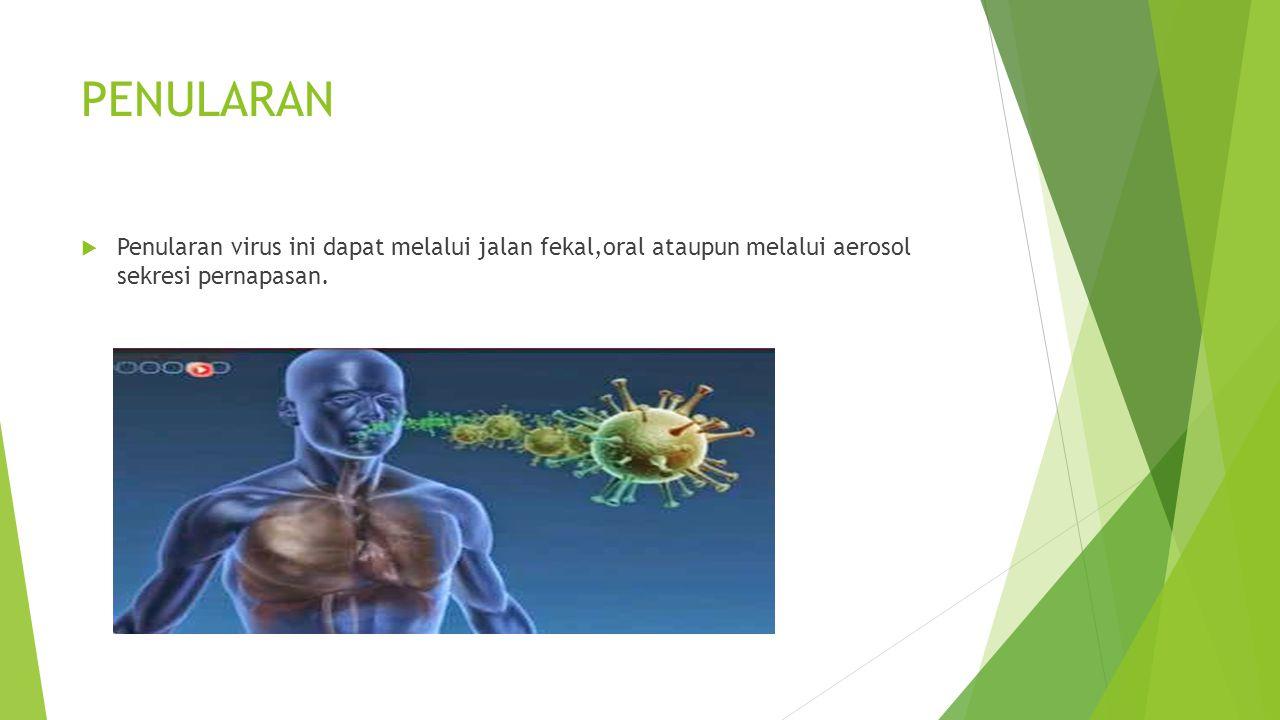 GEJALA  FLU  INFEKSI SALURAN PERNAPASAN BAWAH  RADANG PARU  DEMAM  MYALGIA  LETHARGY  GEJALA GASTROINTESTINAL  BATUK  RADANG TENGGOROKAN