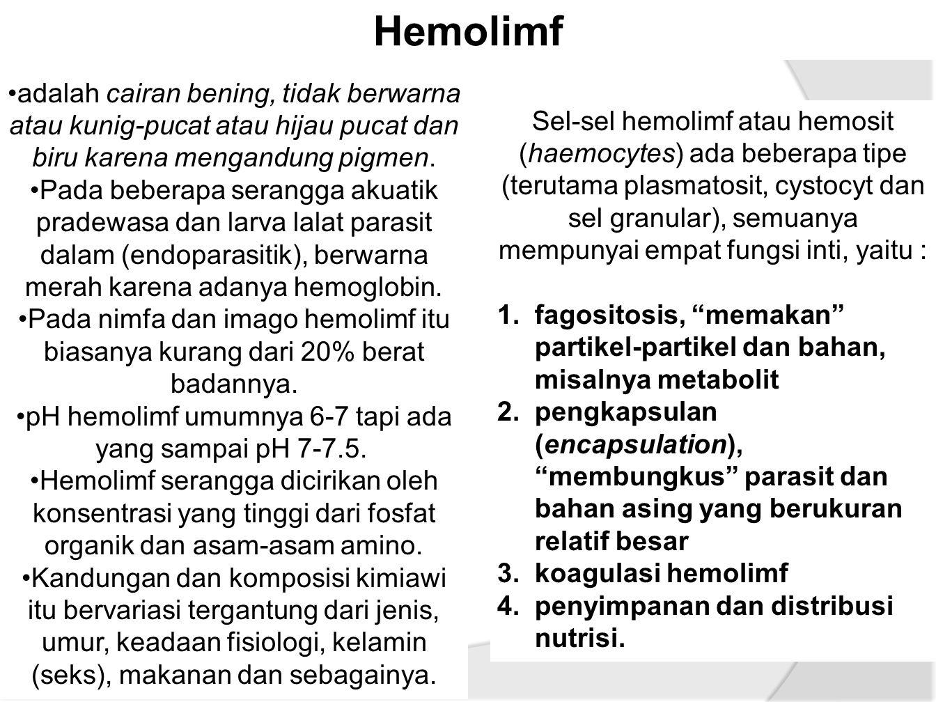 Hemolimf adalah cairan bening, tidak berwarna atau kunig-pucat atau hijau pucat dan biru karena mengandung pigmen.