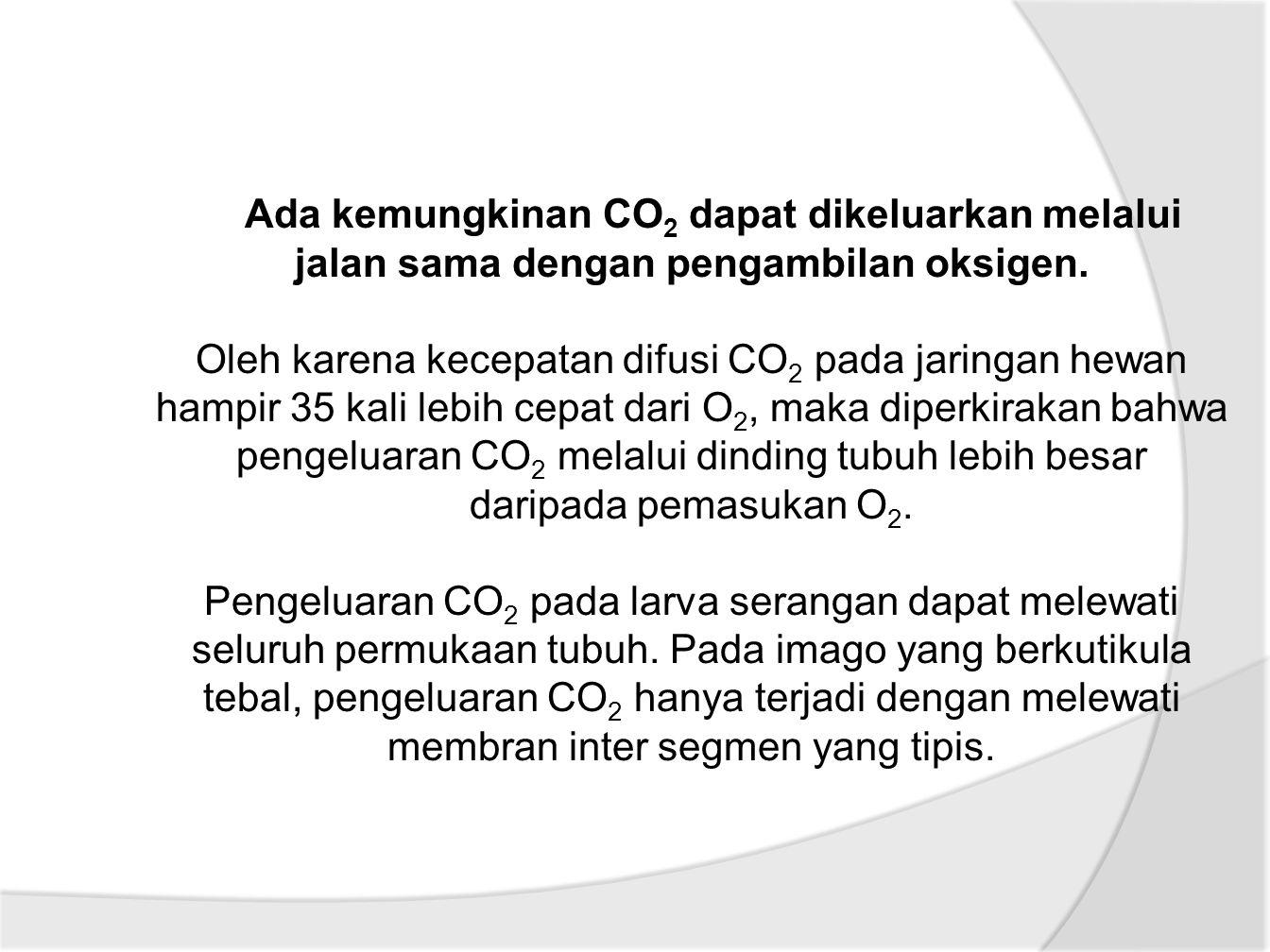 Ada kemungkinan CO 2 dapat dikeluarkan melalui jalan sama dengan pengambilan oksigen.