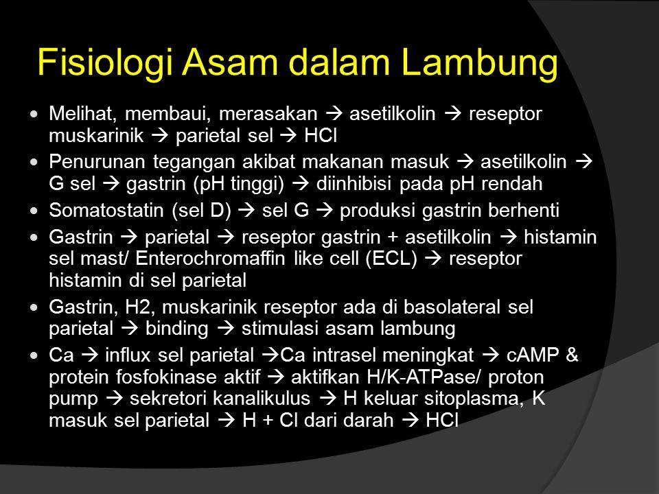 Fisiologi Asam dalam Lambung Melihat, membaui, merasakan  asetilkolin  reseptor muskarinik  parietal sel  HCl Penurunan tegangan akibat makanan ma
