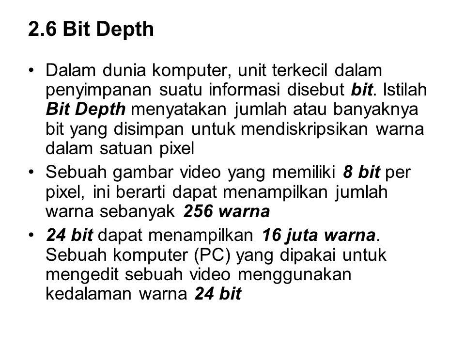 2.6 Bit Depth Dalam dunia komputer, unit terkecil dalam penyimpanan suatu informasi disebut bit. Istilah Bit Depth menyatakan jumlah atau banyaknya bi